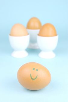 Free Hard Boiled Eggs Stock Images - 5946214