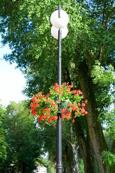 Free Lantern With The Flowers Royalty Free Stock Photography - 5947417