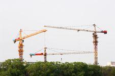 Free Cranes Royalty Free Stock Photo - 5949265
