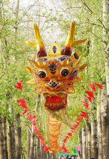 Free Dragon Kite Stock Photo - 5949370