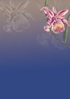 Free Background Illustration 14 Royalty Free Stock Photos - 5949808