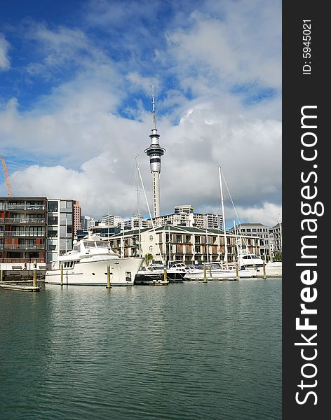 Yachts at Auckland Harbor