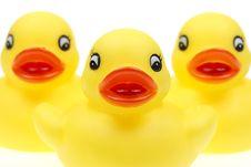 Free Small Yellow Plastic Ducks Stock Photo - 5951420