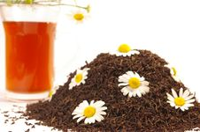 Free Tea And Camomile Isolated Royalty Free Stock Photos - 5956328