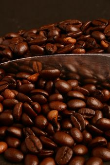 Free Coffee Beans And Scoop Stock Images - 5956864