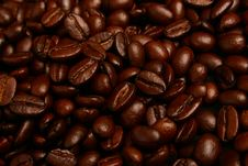 Free Coffee Beans And Scoop Stock Image - 5956961