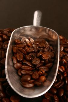 Free Coffee Beans And Scoop Royalty Free Stock Photos - 5957038