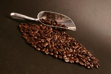 Free Coffee Beans And Scoop Stock Image - 5957041