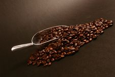 Free Coffee Beans And Scoop Royalty Free Stock Photo - 5957095
