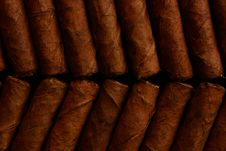 Cigars Stock Photography