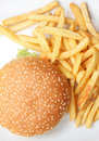 Free Hamburger With French Fries Stock Photos - 5969773