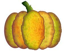 Free Lumpy Pumpkin Stock Images - 5961614