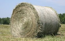 Round Bale Of Hay Royalty Free Stock Photo