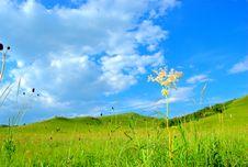 Free Landscape Royalty Free Stock Image - 5963836