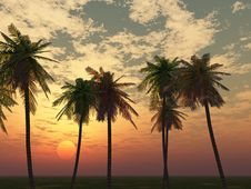 Free Beautiful Sunset Stock Images - 5965064