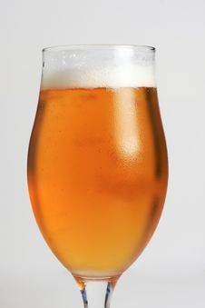 Free Icecold Beer Royalty Free Stock Image - 5967826