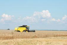 Free Harvesting Stock Image - 5968001
