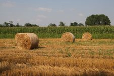 Free Hay Bales Royalty Free Stock Photos - 5968418