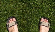 Free Foot In Sandals Royalty Free Stock Photos - 5968438