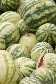 Free Rotting Melons Royalty Free Stock Photo - 5969855