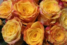 Free Close Up Of A Bouquet Of Flowers Royalty Free Stock Photos - 59633928