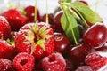 Free Berries Royalty Free Stock Photo - 5977845