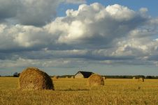 Free Straw Bales In Flied Of Wheat Against Blue Sky Stock Images - 5970394