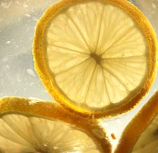 Free Lemon In The Water Stock Photo - 5973340