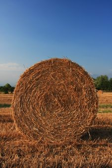 Free Hay Bale Royalty Free Stock Photography - 5974277