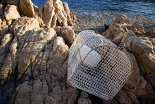 Free Lobster Pot On Rocks Stock Photography - 5974682