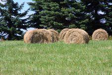 Free Hay Stock Image - 5975161