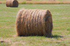 Round Bale Of Hay Stock Photography