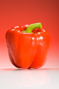 Free Red Bell Pepper On Red Gradient Background Royalty Free Stock Photo - 5976595