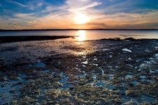 Free Low Tide Royalty Free Stock Photography - 5976987