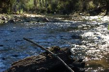 Free Creek Stock Photo - 5978880