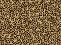 Free Texture Leopard Royalty Free Stock Image - 5981296