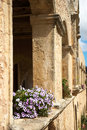Free Flowers At The Wall Of Ancient Fortress Stock Photo - 5985550