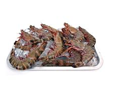 Big Sea Tiger Prawns Tray Full Royalty Free Stock Photos