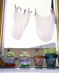 Free Rural Window Scene Stock Photos - 5982713