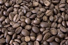 Free Coffee Beans Royalty Free Stock Images - 5984229