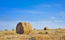 Free Haystack Royalty Free Stock Images - 5984269