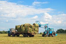 Free Harvesting Royalty Free Stock Photos - 5984488