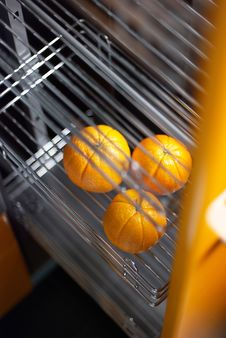 Free Orange In Kitchen In Fridge Stock Photography - 5985662
