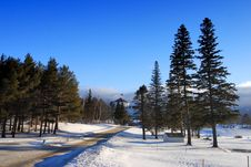Free Bretton Woods, New Hampshire Stock Images - 5985764