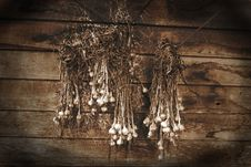 Free Garlic Royalty Free Stock Photography - 5987397
