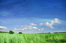 Free Meadows And Sky Royalty Free Stock Photo - 5987415