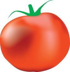 Free Big Red Tomato Stock Photos - 5988283