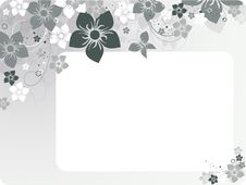 Free Floral Vector Stock Image - 5990691