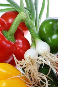 Free Fresh Summer Vegetables. Stock Photo - 5990900