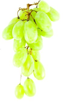 Free Bunch Of Grapes Stock Photography - 5991892